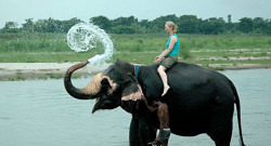 3 Nights Kathmandu & 2-night Chitwan
